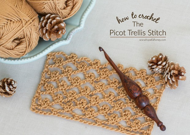 Picot Trellis Stitch Tutorial