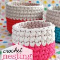 Crochet Zpagetti Baskets
