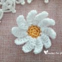 Crochet Daisies Easy Free Pattern